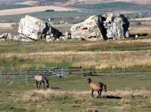 Big Rock w horses